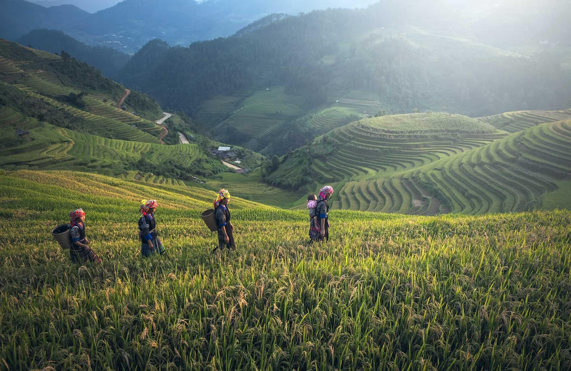 Bali stranica za upoznavanje
