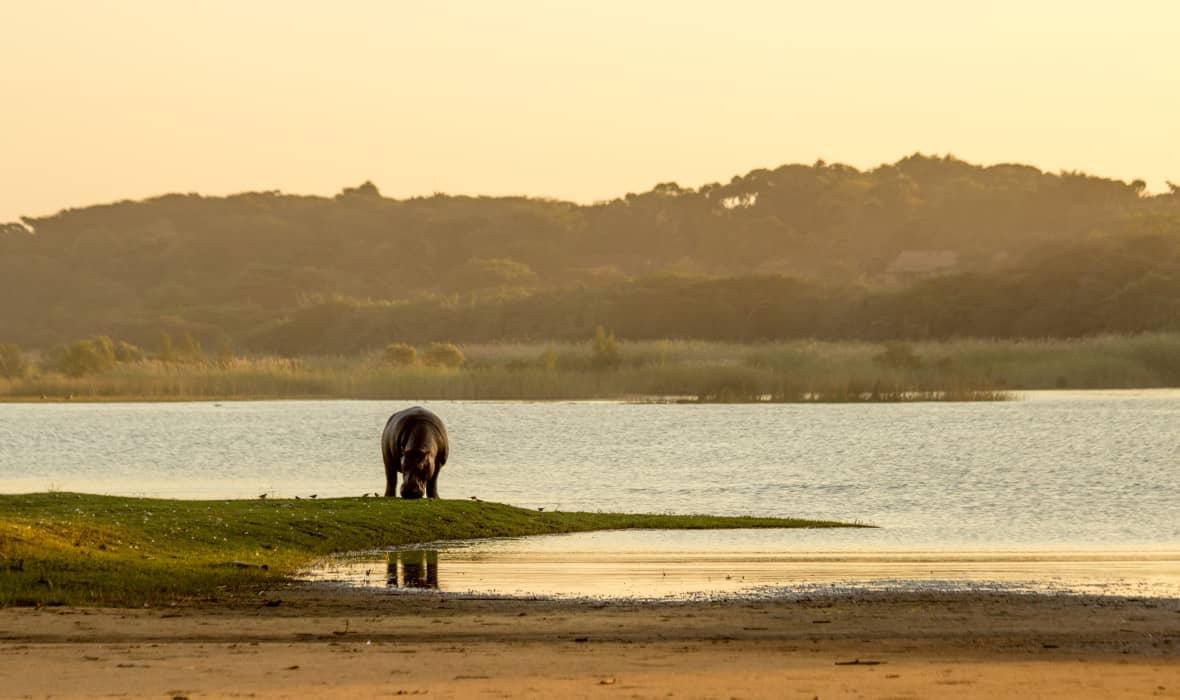 mjesto za upoznavanja iz Južne Afrike upoznavanje s nekim na temelju osobnosti