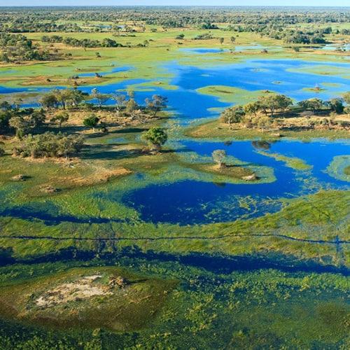 Okavango delta botswana 2