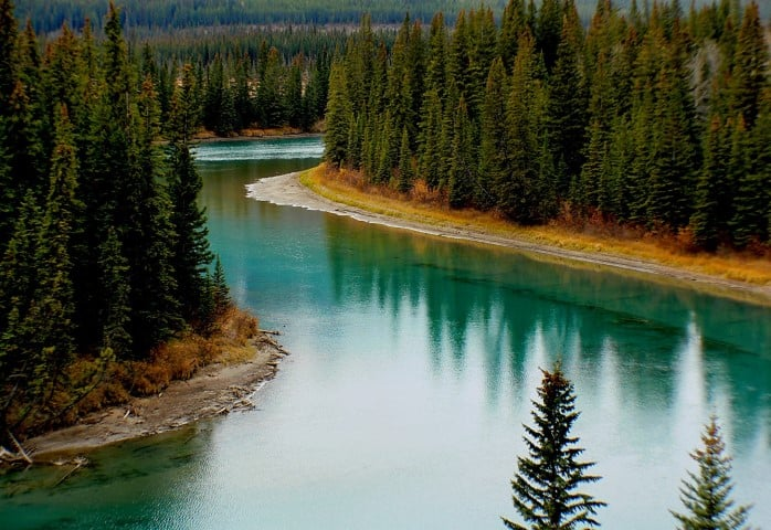 bow river canada forest 219972 small